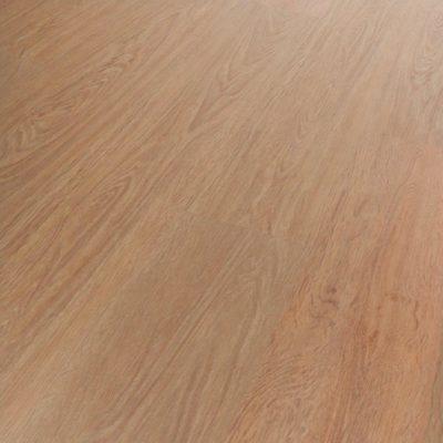 Starclic Project Carmel Oak