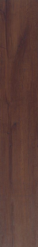 Starclic Project Kentucky Oak